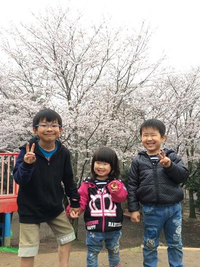 お花見2017.JPG